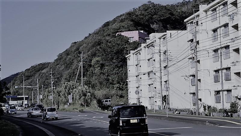 移住直前!奄美大島に住むには、車が必要だ。:アイキャッチ