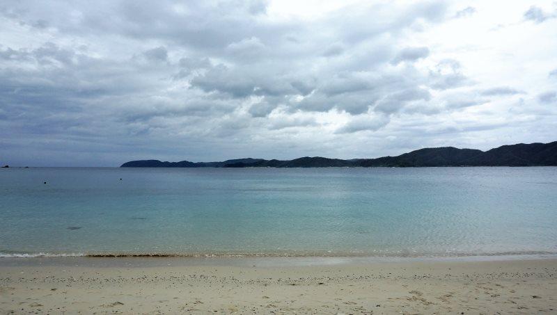 犬も歩けばサンゴに当たる!?ダイビング・シュノーケルのメッカ、倉崎海岸:アイキャッチ